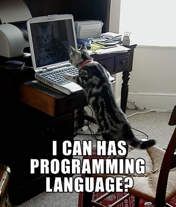 "Cat at computer: ""I can has programming language?"""