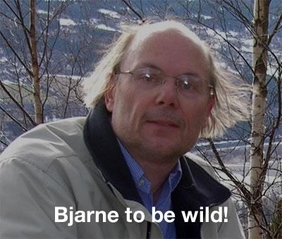 Bjarne Stroustrup: Bjarne to be wild!