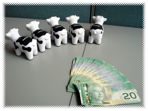Five squishy cows turning their backs to a pile of $20 bills.