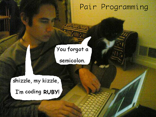 "Guy pair programming with his cat. Cat: ""You forgot a semicolon."" Guy:""Shizzle, my kizzle, I'm coding Ruby!"""